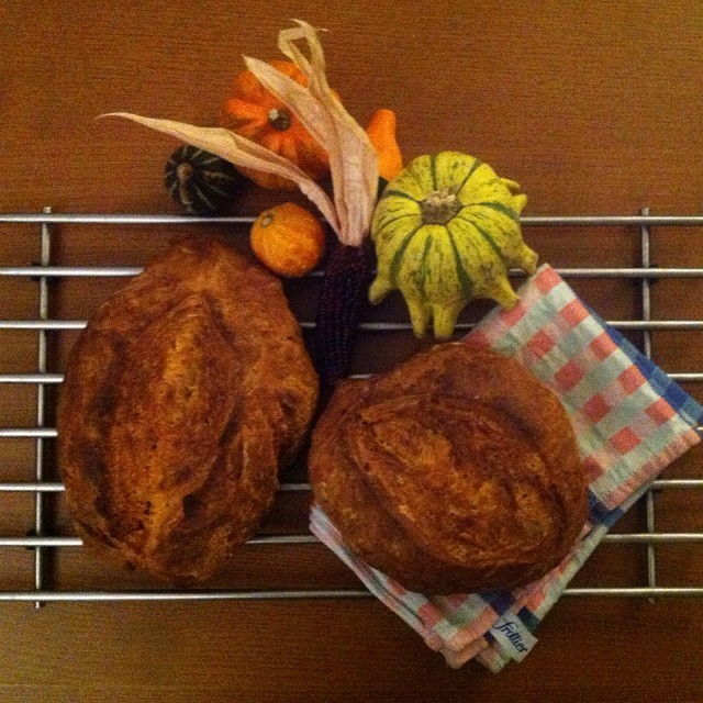 Kürbisbrot #Kürbis #Pumpkin #Brot #Bread
