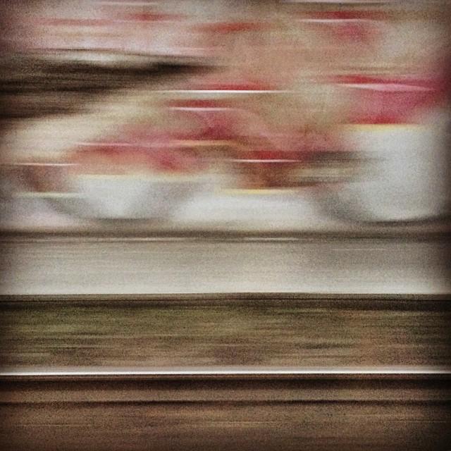 Riding train no. 18