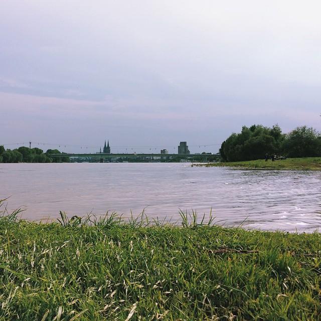 Down the river #cologne #köln #rhein #rhine #VSCOcam