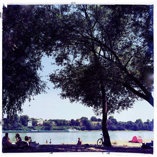 Summertime Blues #cologne #rhine #sun #summer
