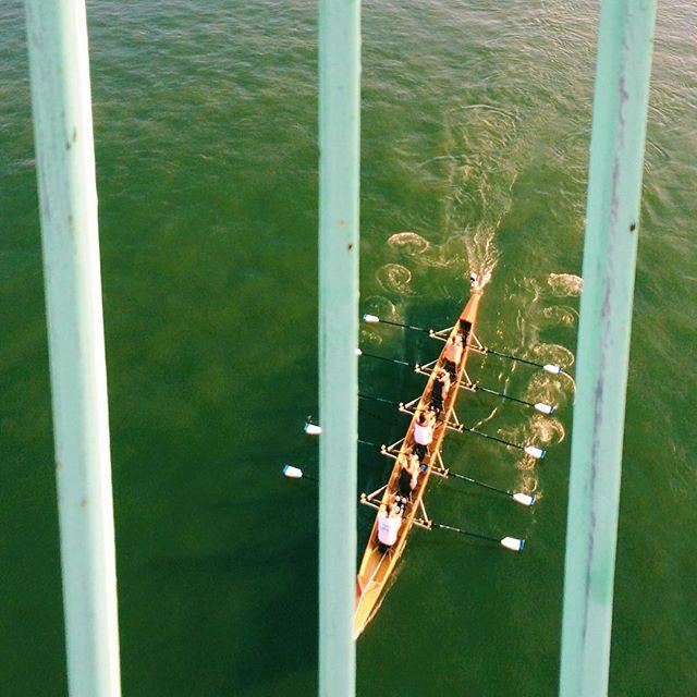Rowing #rhein #rhine #cologne #köln