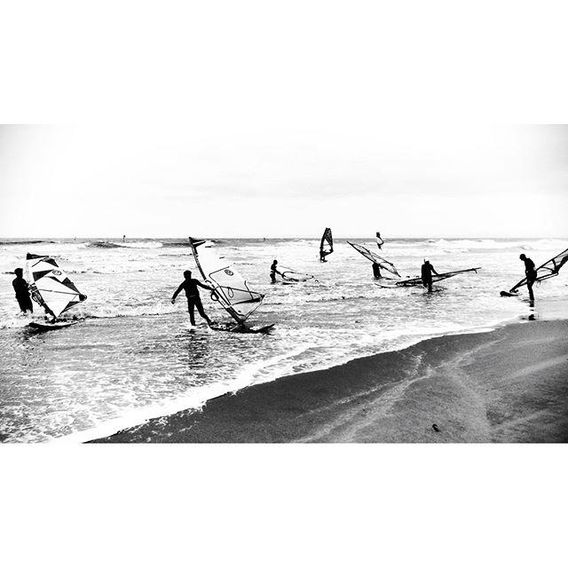 Surfing #northsea #belgium #oostende #blackandwhite