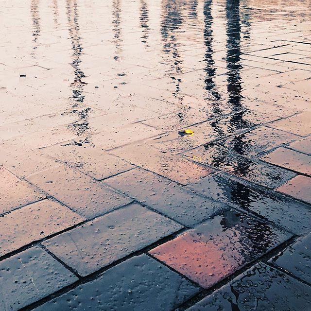 Wet  #s-bahn
