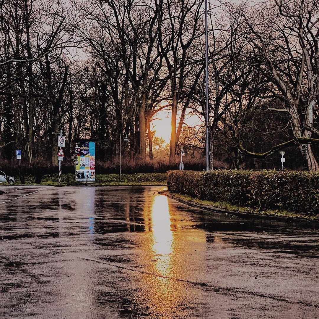 Wet Light